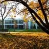 Triton College Student Selected for 2021 DREAM Scholars Program