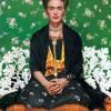 Eterna: Exhibición de Frida Kahlo Debuta en Chicago