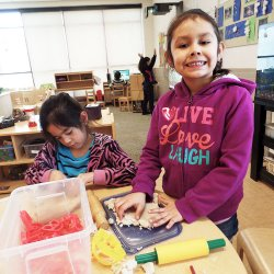 Lawndale News Chicago's Bilingual Newspaper - Education